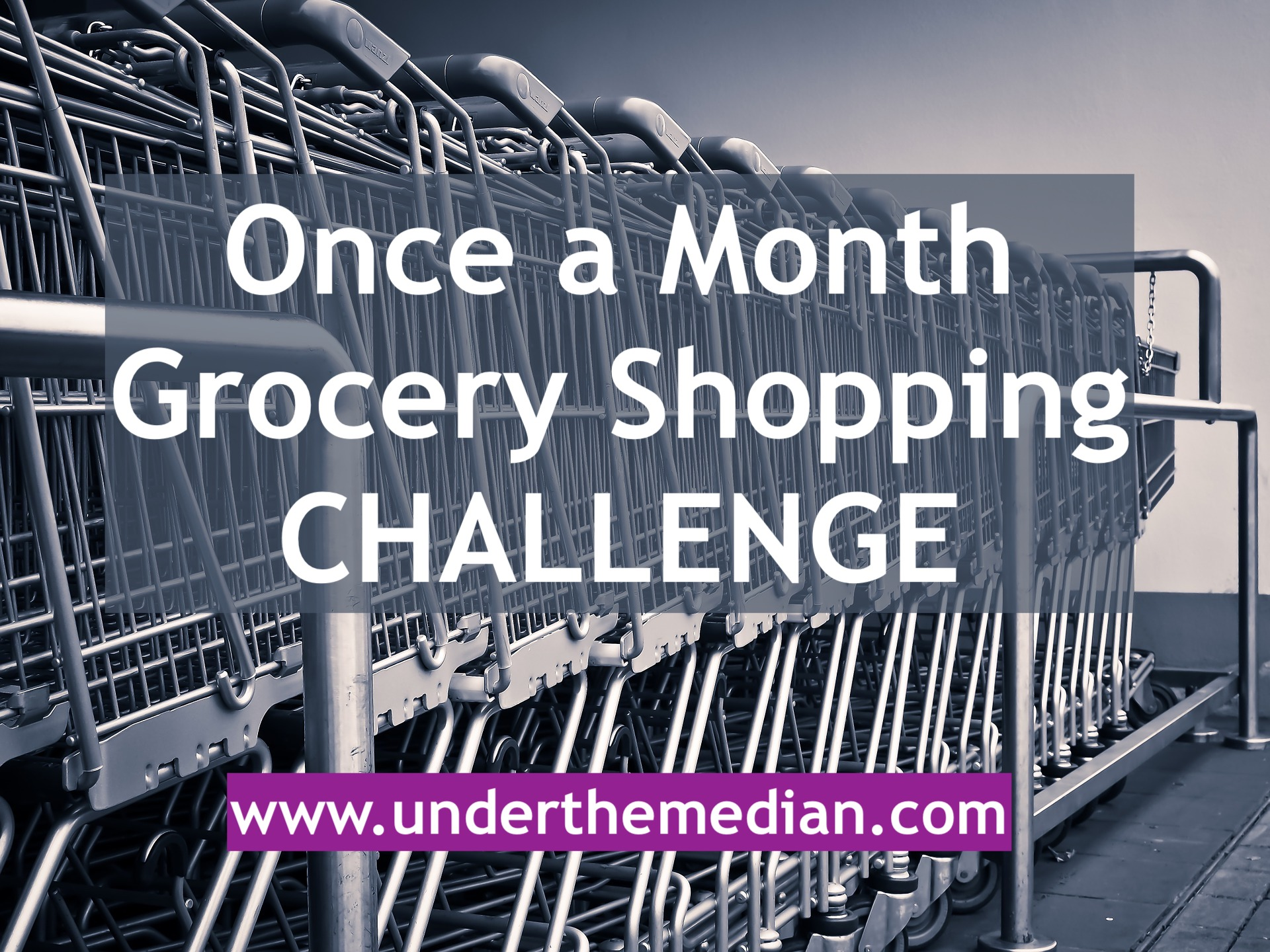 My New Challenge: Once A Month Grocery Shopping