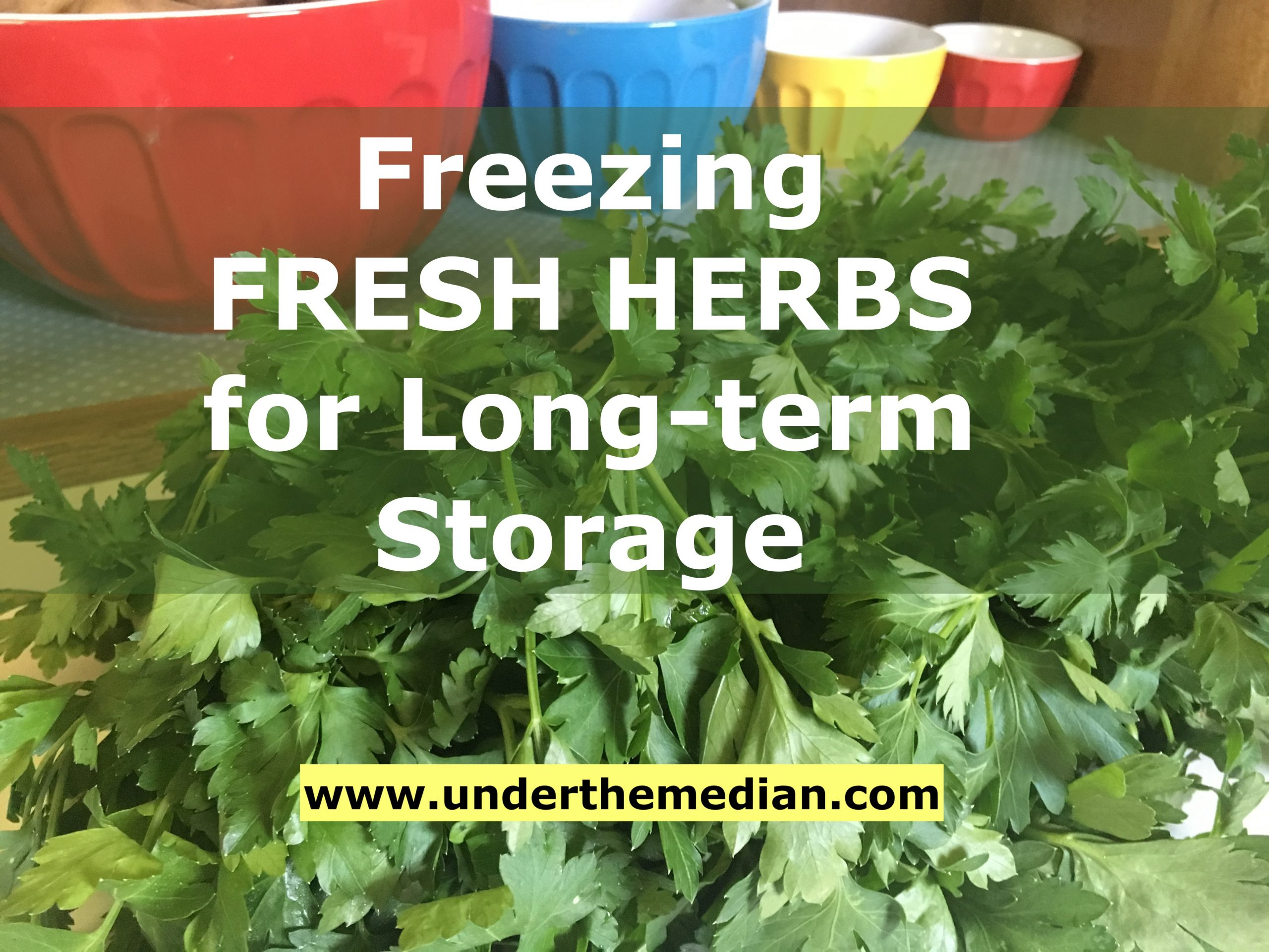 Freezing Fresh Herbs for Long-term Storage