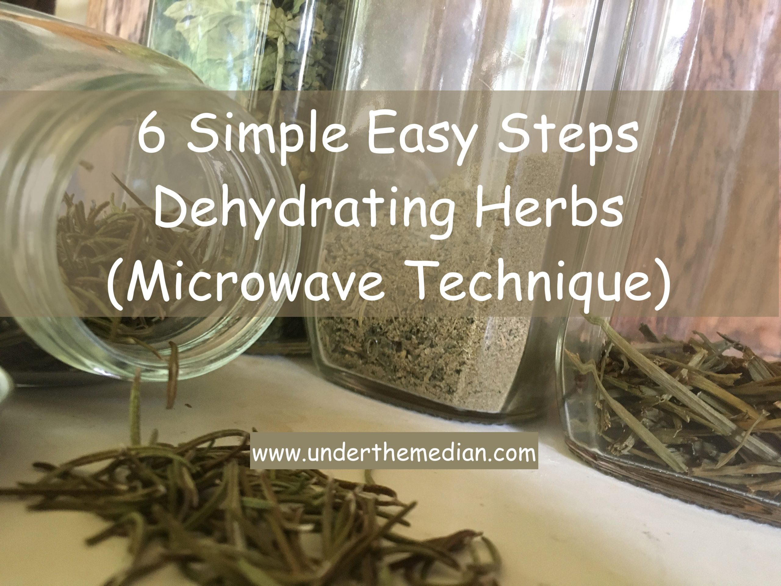 6 Simple, Easy Steps to Dehydrating Herbs (Microwave Technique)