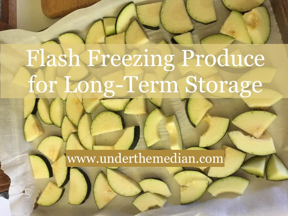 Quickly and Easily Preserve Produce with Flash Freezing