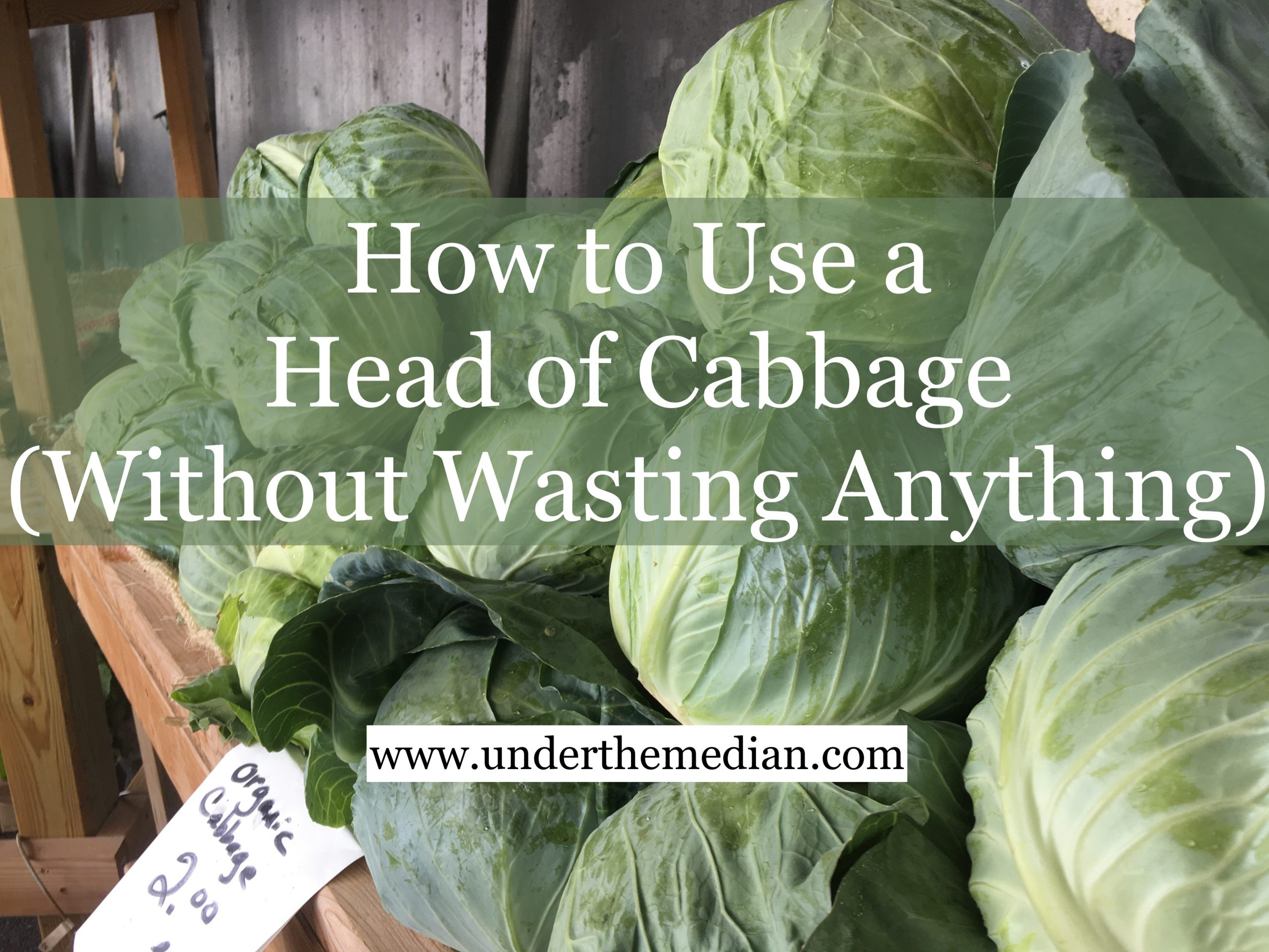 How to Use a Head of Cabbage Without Wasting Anything